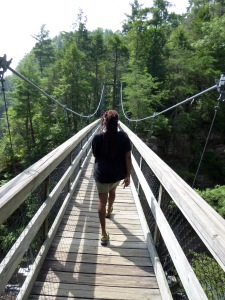 Monica suspension bridge